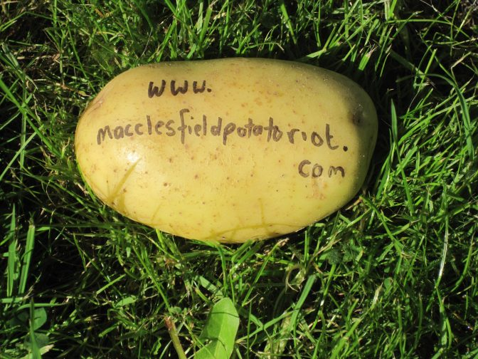 Macclesfield Potato Riot Actors' Workshop: Saturday 11th February 10:30am @ Macclesfield Library